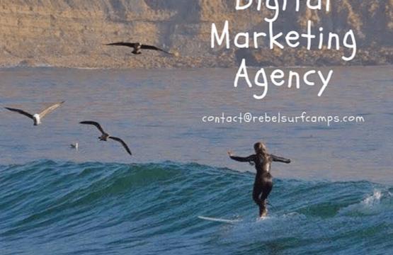 your_surf_business_publicity.blogpost